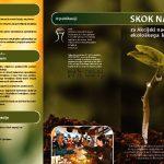 thumbnail of Zgibanka-ANEK-2010