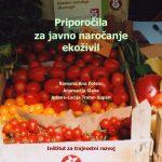 thumbnail of Priporocila-za-ZJN-ITR-2009_koncni